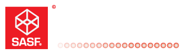 Sudamericana de Software
